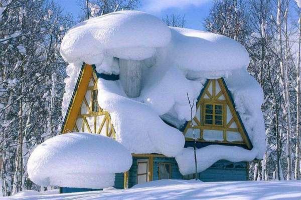Щетка для уборки снега мотоблоком